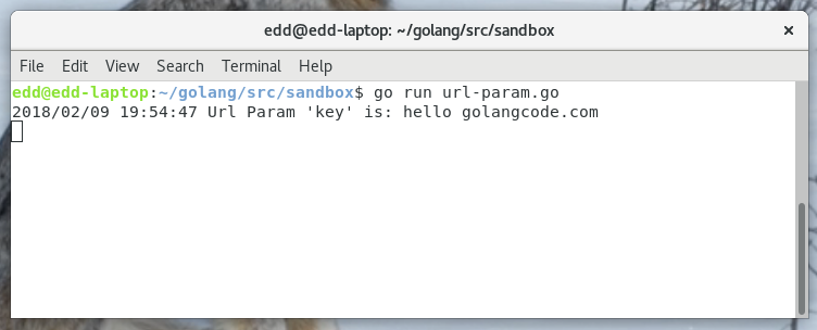 Get a URL Parameter from a Request · GolangCode